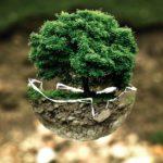 自分を成長させる極意-たった一度きりの人生を輝かせる方法